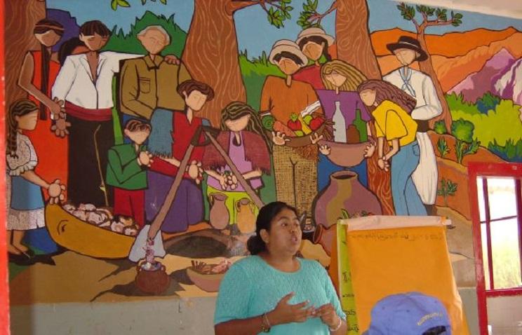 COAJ-Workshop von Indigenen in Argentinien u.a. zum Thema Landrechte mit der Friedenspreisträgerin Natalia Sarapura, Präsidentin von COAJ.