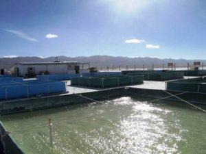 In Argentinien verstärkt das Exportprodukt Lithium die Wasserknappheit, da es mittels Wasserverdunstung gewonnen wird.