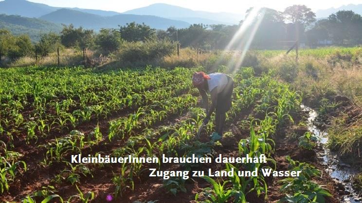 Kleinbäuerin in Simbabwe bewirtschaftet ihr Feld