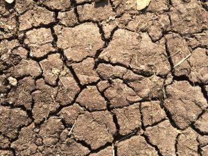Ausgetrockneter Boden und Wassermangel – Knappheit kann zu innerstaatlichen Ressourcenkonflikten führen