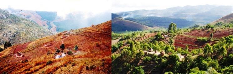 Der Hausberg des Dorfes Chikukwa in Chimanimani, Simbabwe Anfang der 90er Jahre verödet und 20 Jahre später fruchtbar.