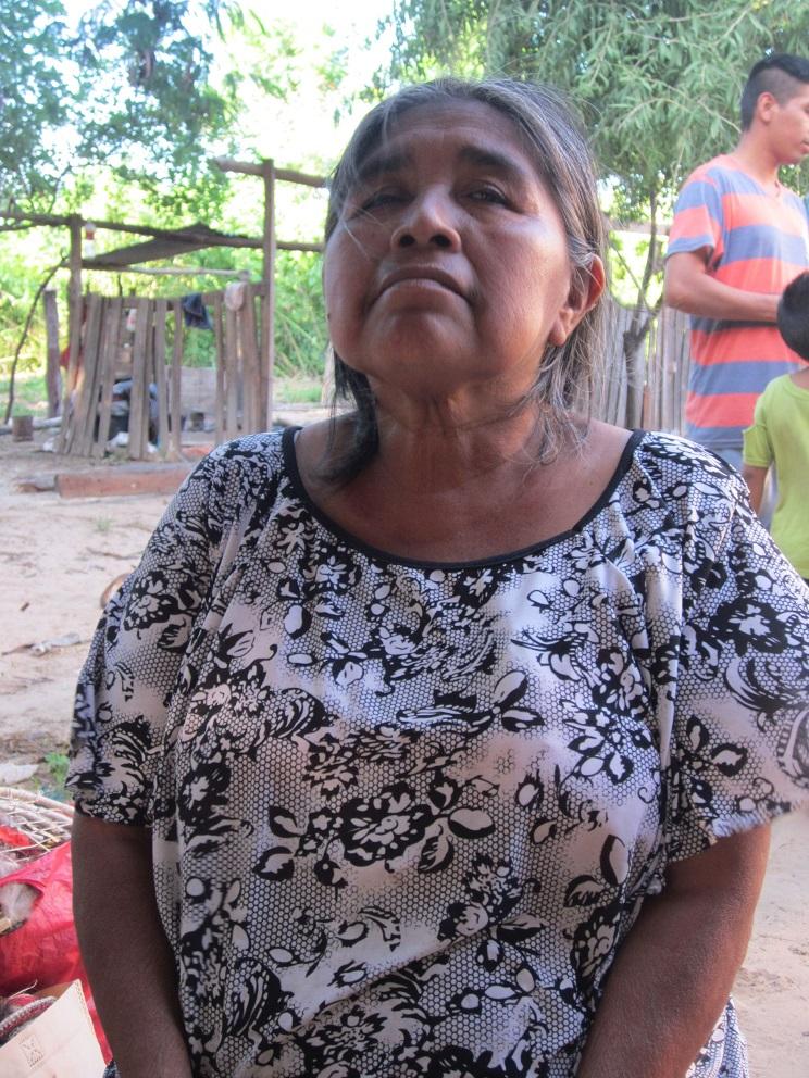 Claudia-prosoco-argentinien-indigena