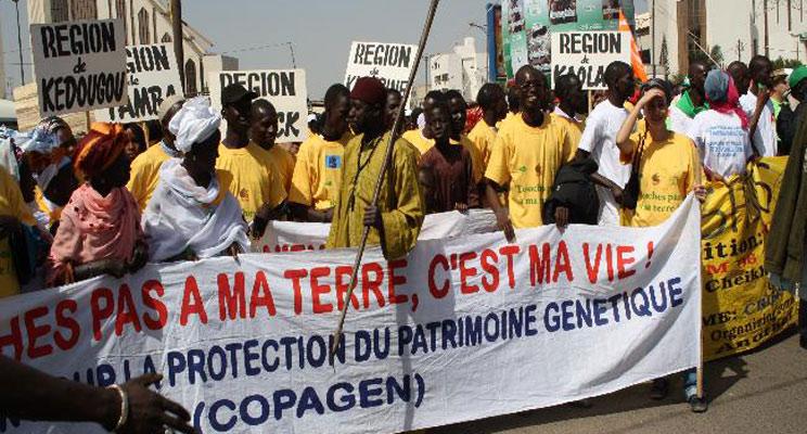 Demo-gegen-Landraub--ProNat--Senegal