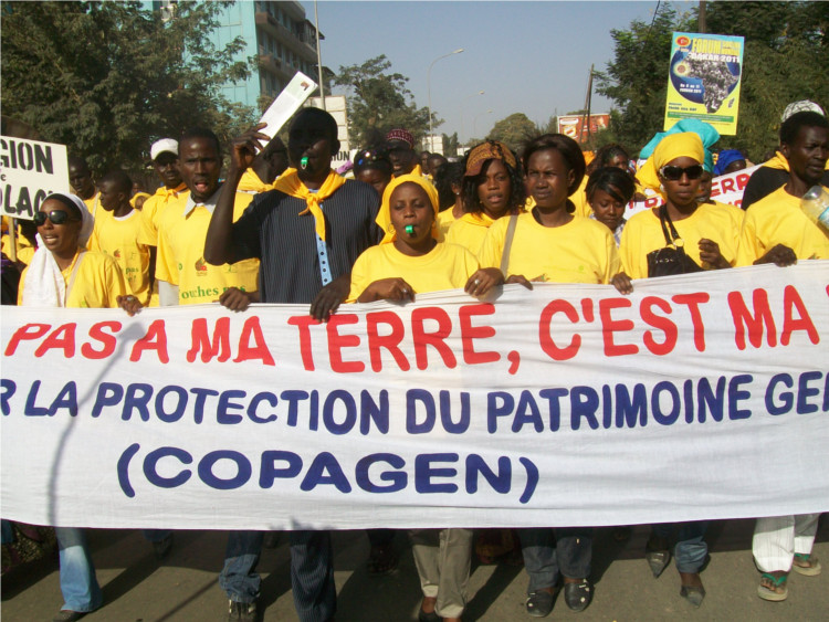 Demonstration gegen Landraub im Senegal