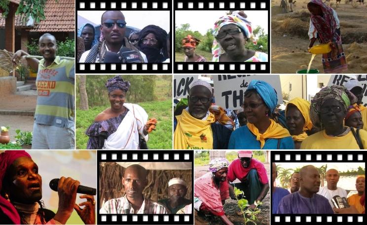 Collage von Kleinbäuerinnen und -bauern, Hirten und zivilgesellschaftliche Aktivistinnen gegen LAnd- und Wasserraub in Senegal